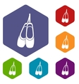 Pointe shoes icons set vector image vector image