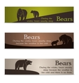 Set of bear banners vector image vector image