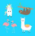 alpaca llama flamingo sloth unicorn set cute vector image