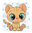 cartoon kitten on a blue background vector image