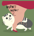 happy cat and his master owner meow text vector image