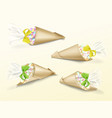realistic set paper cone bags vector image vector image