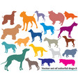 set of colorful dogs silhouettes-2 vector image vector image