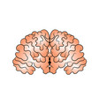 picture of the brain drawn by hand vector image