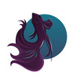 beautiful purple fish vector image