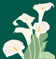 Card with bouquet calla lilies