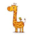 cute giraffe calf standing vector image vector image