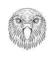 kakapo owl parrot head drawing black and white vector image