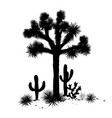 outline landscape with joshua tree and cacti vector image vector image