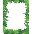Tropical leaf background vector | Price: 1 Credit (USD $1)