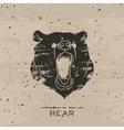 Big black bear roaring vector image vector image
