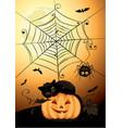 black cat on pumpkin vector image