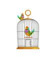 Cartoon couple of multi-colored tropical birds vector image