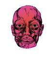 corpse head vector image