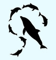 dolphin fish animal silhouette vector image