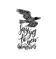 say yes to new adventures hand lettering vector image
