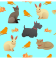seamless pattern with home pets vector image