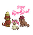 funny puppies on snowy background vector image