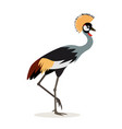 african animal beautiful colorful crowned crane vector image vector image