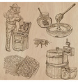 bees beekeeping and honey - hand drawn pack 11 vector image