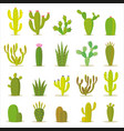 Cactus collection in