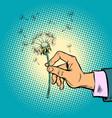 dandelion in a man hand vector image vector image
