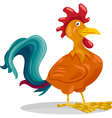 funny rooster cartoon vector image vector image