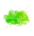 Green Watercolor splatters vector image