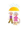 grey-haired couple walks keeping umbrella vector image vector image