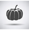 Pumpkin icon on gray background vector image