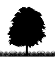 Silhouette of tree with grass vector image vector image
