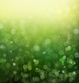 Sunshine light and bokeh nature background eps10 vector image vector image