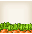 cute background with carrot border vector image