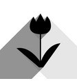 tulip sign black icon with two flat gray vector image vector image