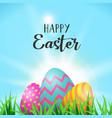easter eggs greeting card in spring garden grass vector image