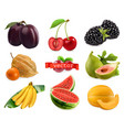 fresh fruits and berries plum cherry blackberry vector image vector image