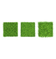 green grass border on white background top view vector image vector image