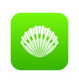 pearl shell icon digital green vector image vector image