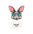 portrait rabbit in glasses smart bunny geek vector image