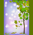 seasons tree in summer vector image