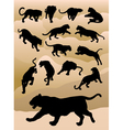 Tiger Silhouettes vector image vector image
