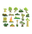 tropical jungle landscape set design elements for vector image vector image