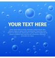 Your text here on bubble background vector image