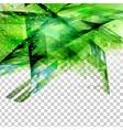 Abstract green top oriented decor vector image vector image
