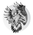 bird owl wing black fly vector image