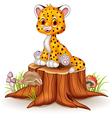 Cartoon happy baby cheetah sitting on tree stump vector image vector image