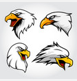 collection eagle hawk head mascot vector image