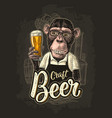 monkey dressed apron hold beer glass vintage vector image vector image