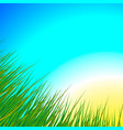 morning sunrise in the meadow vector image vector image