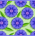 summer seamless pattern with 3d cornflowers vector image